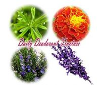 Daily Deodorant Tincture