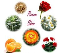 Renew Skin