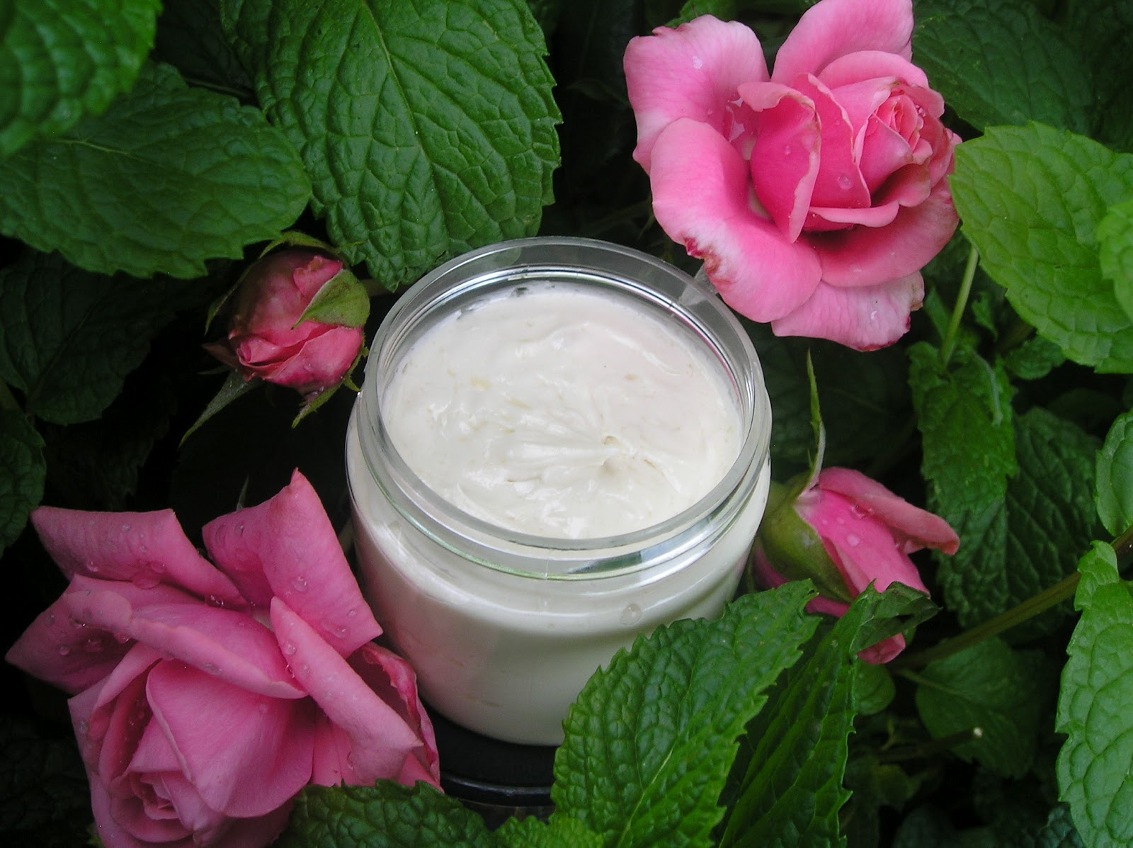Green Tea & Rose Facial Lotion